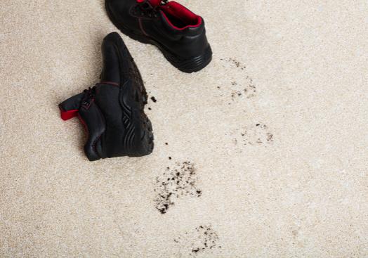 carpet-dusting-1